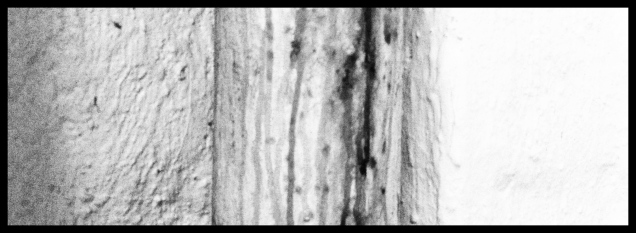 Photo 2012-05-18 09 47 17
