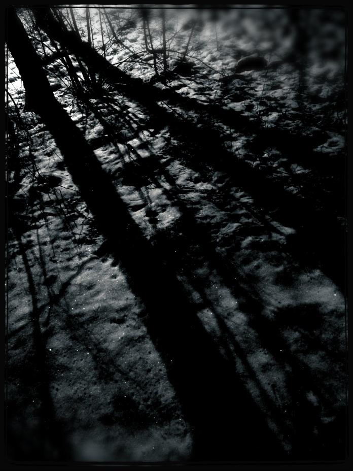 Photo 2013-01-16 00 43 08